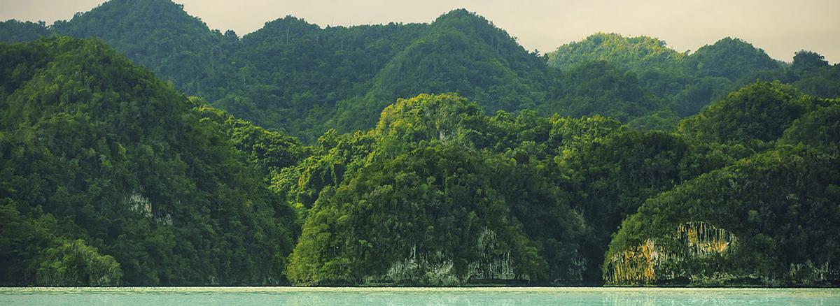República Dominicana. Parque Nacional de Los Haitises. Bahía de Samaná