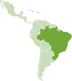 INSTITUTO BRASILEÑO DEL MEDIO AMBIENTE Y DE LOS RECURSOS NATURALES RENOVABLES