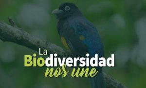 La biodiversidad nos une