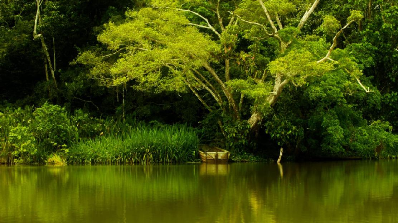 Ecuador impulsa procesos de participación ciudadana en sus estrategias y acciones de sostenibilidad ambiental