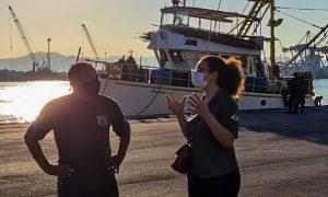 Operación Plataforma incauta 60 toneladas de pescado irregular