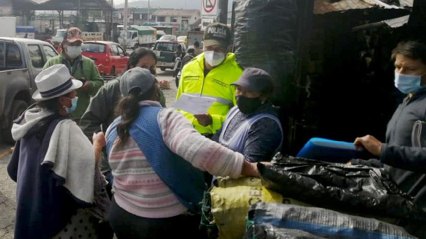 Azuay, Cañar y Morona Santiago implementan acciones para evitar la tala y comercialización de la palma de cera