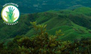 La ANLA modifica el Plan de Manejo Ambiental del Programa de Erradicación de Cultivos Ilícitos mediante la Aspersión Aérea con el Herbicida Glifosato – PECIG