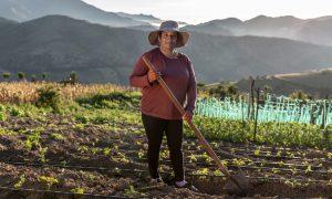 Proyecto liderado por el MAAE presentó herramientas para transversalizar el enfoque de género en iniciativas de cambio climático