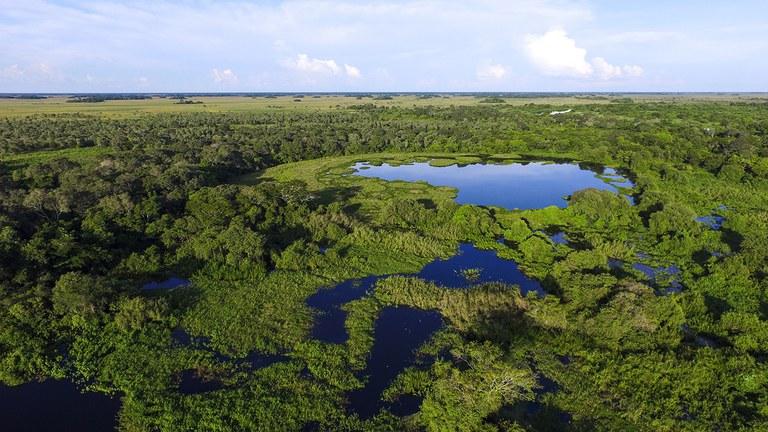 Las acciones de compensación ambiental totalizan más de R $ 319 millones para 142 Unidades de Conservación