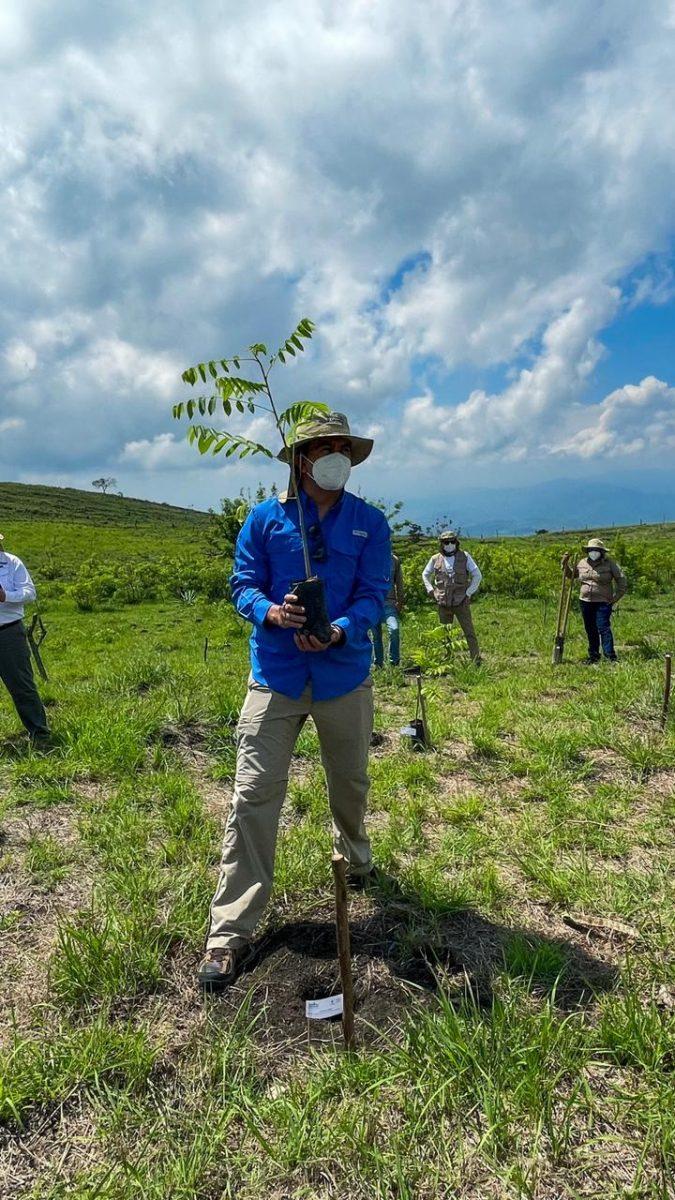 """Reforestaremos 15 áreas de conservación con la campaña """"Árboles para El Salvador, un pulmón para el futuro"""""""
