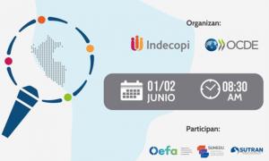 OEFA participó en el Seminario Internacional Buenas Prácticas de Fiscalización en el marco de la COVID-19